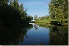 Biesbosch 3-10-10 050 (Large)