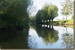 Biesbosch 3-10-10 051 (Large)