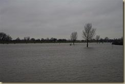hoog water jan 2011 005 (Large)