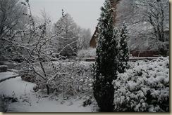 sneeuw 2010 037 (Large)